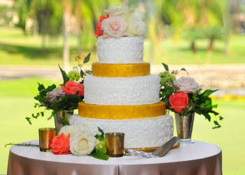 Wedding Cake by Der Dutchman Sarasota
