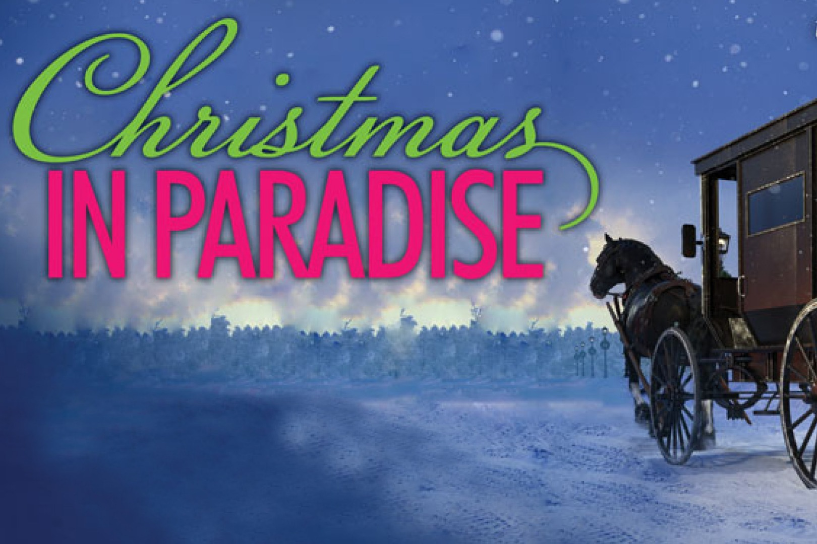 Christmas In Paradise Callout
